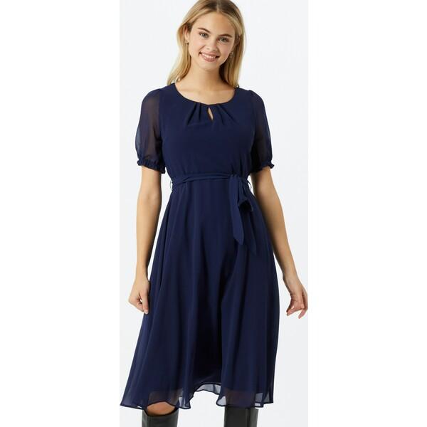 Dorothy Perkins Sukienka koktajlowa 'BILLIE' DPK1973001000005